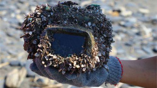 Подводная одиссея потерянного фотоаппарата: как три года спустя камера вернулась к владельцу